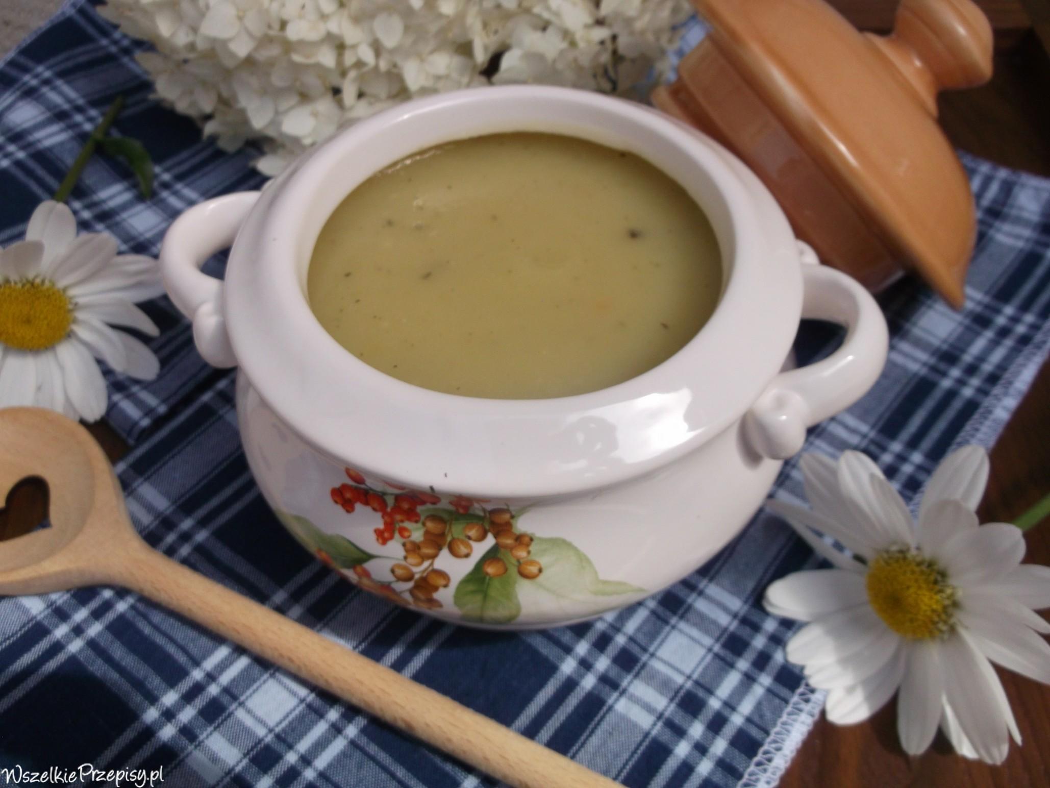 Zupa Krem Z Cukinii Przepisy Kulinarne Wszelkieprzepisy Pl